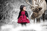 Child Christmas Portrait with reindeer ( California & bay area photographer )