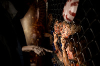 Scary Hansel and Gretel ( California & bay area photographer )